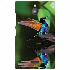 Nokia X2 Back Cover - Colorful Bird Designer Cases