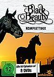Black Beauty, Komplettbox [8 DVDs]
