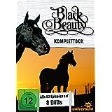 Black Beauty, Komplettbox