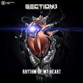 Section 1-Rhythm Of My Heart