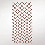 Videx-Weidenrankgitter Spalier, ausziehbar (max 90 x 180cm)