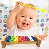 JRD&BS WINL Xylophone for kids,The First Birthday Gift for kids 1-3 Year Old Girl,Boys,Musical Kid Toy for Kids for 4-8 Year Old Boys Gift,Whith Two Child-Safe Mallets for 2-6 Year Old for Making Fun