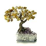 Astro Gallery Of Gems Klein Citrin Edelstein Baum auf Amethyst Matrix
