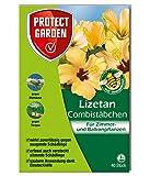 PROTECT GARDEN Lizetan Combistäbchen (ehem. Bayer Garten), Insektenabwehr für Zimmer- und Balkonpflanzen, 40 Stück