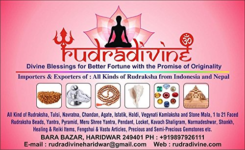 RUDRADIVINE Rudraksha Golden Cap Mala with 5 Face Rudraksha 5 mm for Men and Women