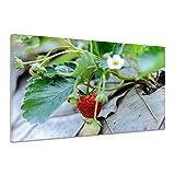 Erdbeere Frischer Beerenobst Früchte Ernte Reifer Leinwand Poster Druck Bild dz0530 80x60