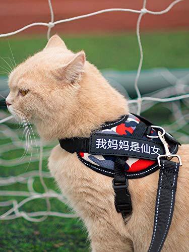 LXLLXL Cat Traction Rope Unbreak Free Strap, Katze Kette Hundekette Kragen Kragen Seil Special Bolt Kätzchen Sleuth Cat Slip Cat Rope Weste Typ