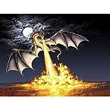 CNLSZM Diamant Peinture Complète Drill Night Fire Dragon Mosaic DIY Diamant Peinture Point De Croix Broderie Décor À La Maison-40x50cm