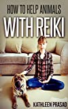 How To Help Animals With Reiki