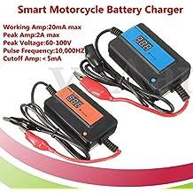 Veena Orange 1Pc Smart Motorcycle Charger Auto Pulse Desulfator for 1248V Lead Acid Battery
