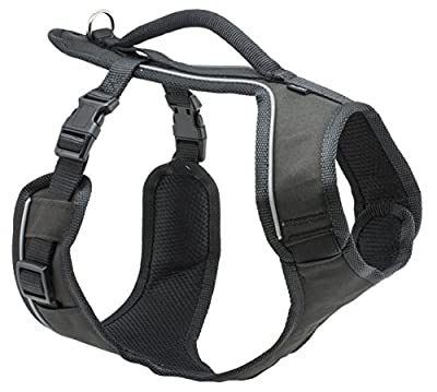 PetSafe ESPH-L-APL-19 EasySport Geschirr