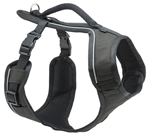 PetSafe EasySport Harness, Medium, Black, Adjustable, Control, Padded for small/ medium/ large dogs