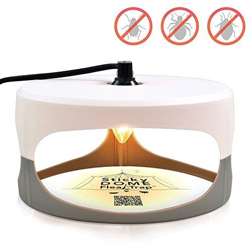Aspectek Trampa de domo pegajosa para pulgas + 2 discos de con pegante - Efectivo contra las pulgas, mosquitos (UK Plug)