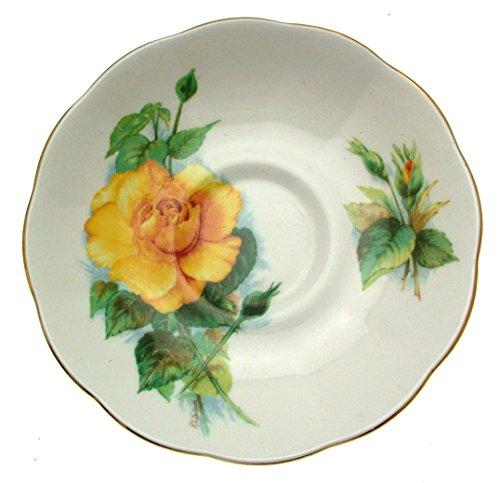 Royal Standard Roslyn Wheatcroft Rosen Mme CH Sauvage Untertasse nur Wheatcroft Rosen