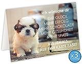 """Geburtstagskarte """"Hund mit lustigen Spruch"""" - 3er Set mit Umschlägen"""