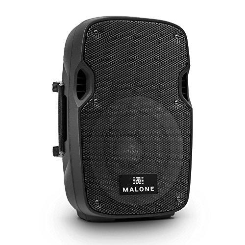 Malone PA-Lautsprecher-Paar 2x20cm