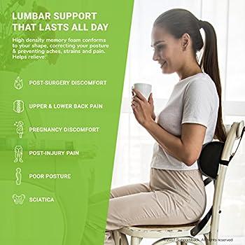 Supportiback coussin lombaire thérapeutique en forme de D, mémoire de forme, coussin de soutien ergonomique pour le dos pour maison, bureau, voiture, voyage, soulage et prévient les douleurs dorsales