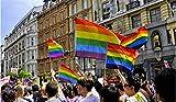 Supertop 14 * 21cm / 90 * 60cm / 90 * 150cm LGBT Arcobaleno Bandiera Gay Pride Bandiere Lesbiche Orgoglio Accessori per Party Bar Festival Celebrazione Carnevale Orgoglio Evento