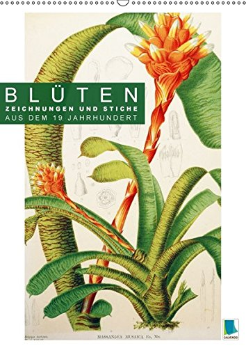 Blüten: Zeichnungen und Stiche aus dem 19. Jahrhundert (Wandkalender 2018 DIN A2 hoch):...
