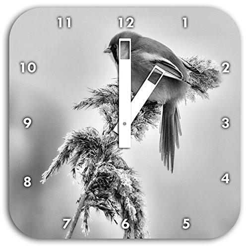 Monocrome, kleiner Vogel auf Weizen im Winter, Wanduhr Durchmesser 28cm mit weißen eckigen Zeigern und Ziffernblatt, Dekoartikel, Designuhr, Aluverbund sehr schön für Wohnzimmer, Kinderzimmer, Arbeitszimmer