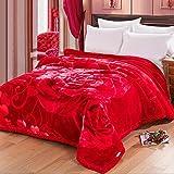 Rouge Rose Motif Épaississement Raschel Couvertures Hiver Nap Sieste Double Lit...