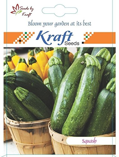 squash/Zucchini Vegetable Seeds (Pack of 2) by Kraft Seeds  available at amazon for Rs.85