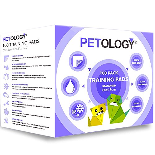 PETOLOGY® 100 Count, 60 cm x 45 cm Standard Size Training Pads Puppy Dog Cat Super Absorbent Odourless Pads Pee Toilet House Training (Size: Standard 60cmx45cm 100 Pads)