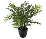 "Closer to Nature Artificiale 2ft 5""Bamboo Palm Tree - seta artificiale Impianti e Albero Gamma"