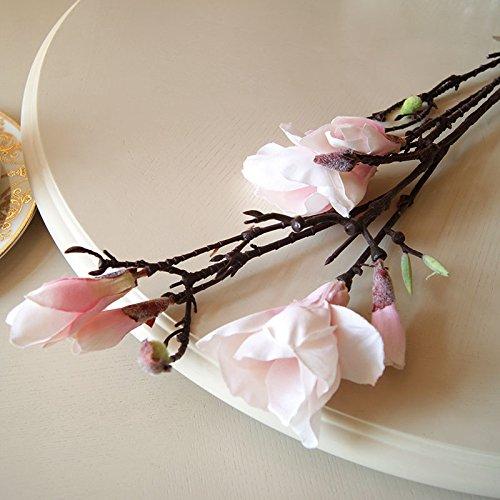 HUAYIFANG Magnolia Blumen Blume Deko Seide Blumen