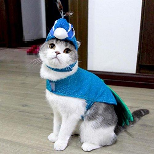 Zunea Kleiner Hund Katze Unter 20Pfund Halloween Pfau Kostüme Verstellbare Outfit Kleidung - Adult Cocker Spaniel Kostüm