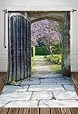 NIVIUS PHOTO 150*220cm Alte Tür Druck im Freien Thema Fotografie Kulissen Fotostudiohintergründe gedruckt mit Gartentür D-1288
