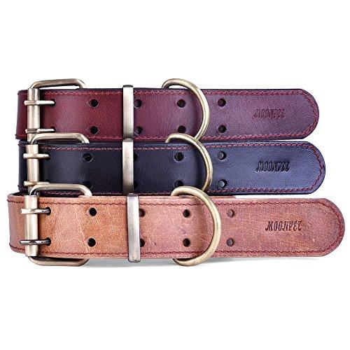 moonpet echtes Leder Hundehalsband, schwere Pflicht massivem Messing Schnalle–Ideal für Laufen Training, passt klein mittel große Hunde (Große Messing-schnalle)