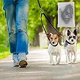 Cadrim Hundeleine für 2 Hunde | Führleine Hund | Dehnbare reflektierende Doppelleine 50 cm bis 80 cm für zwei Hunde - 5