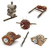 6 teiliges Schredder und Knabber Set für Vögel | Basisausstattung für Vogelhalter | Wellensittich Spielzeug | Vogelspielzeug Nymphensittich