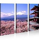 islandburner Bild Bilder auf Leinwand Fujiyama Berg Japan XXL Poster Leinwandbild Wandbild Dekoartikel Wohnzimmer Marke