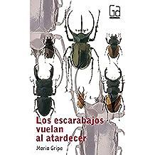 Los escarabajos vuelan al atardecer: 31 (Gran angular)