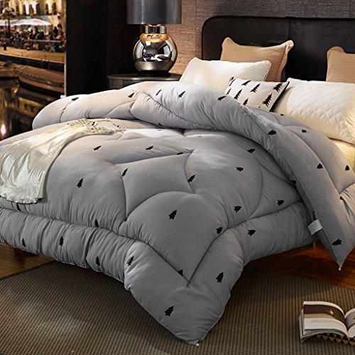 MMM Décolletage d'hiver plus épais Conservez le couvre-lit chaud au coeur de la chambre des dortoirs d'étudiants Double individuel La literie de printemps et d'automne (taille : 220 * 240cm(4kg))