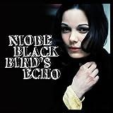 Songtexte von Niobe - Blackbird's Echo
