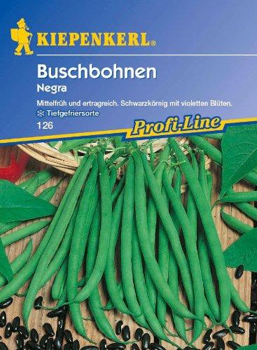 Sperli Gemüsesamen Buschbohnen Negra, grün