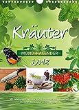 Kräuterkalender 2018: Die Kraft der Kräuter im Alltag nutzen.