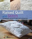 Raised Quilt and Stitch: Techniques, projects and pure inspiration
