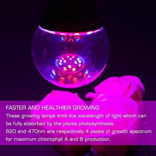 JandCase Grow LED-Lampe, 6 W, E27, A60, nicht dimmbar, 270 ° Abstrahlwinkel, rot/blaue Beleuchtung, Hydrokultur-Lichter für Garten, Gewächshaus, Innenwachstum, Bonsai-Pflanzen,