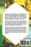Imkern für Anfänger ? Das Praxisbuch: Schritt für Schritt zum eigenen Bienenvolk - Joachim Schulte
