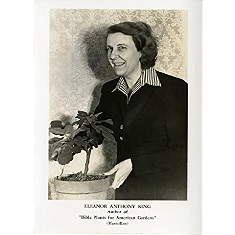 POSTER Eleanor Anthony King 1901 1949 King Eleanor Anthony 1901 1949 Black and White Prints Topic Botany Acc 90 105 SIA SIA2008 4829 Eleanor Anthony King 1901 1949 editor Audubon Magazine author Bible Plants American Gardens Macmillan 1941