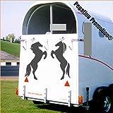 2 große steigende Pferde Aufkleber Anhänger Pferd Anhänger 60x60cm