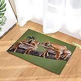 Alfombra de baño Frog de CDHBH, diseño de Rana y Mosca en la Rama, Antideslizante,...