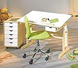 Interlink Kinderschreibtisch Anas mit Stuhl Mali Grün und Rollcontainer ANALICE