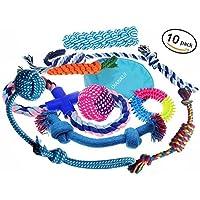 Spielzeug für Hündchen 10er Geschenkset mit einer Vielzahl von Schleppseil Wurfscheibe Chew Chase Bälle und Quietschen Spielzeug für kleine bis mittelgroße Hunde