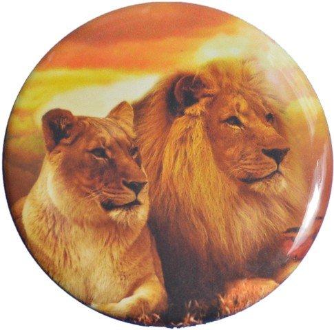Miroir Lion