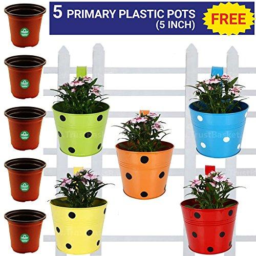 Trust Basket Single Pot Railing Planter, Set of 5 (Red, Yellow, Blue,...